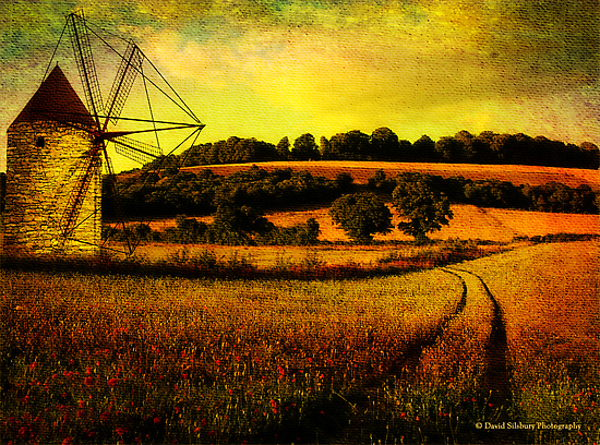 Field of Dreams by David's Photoshop