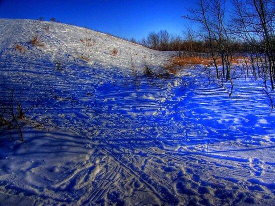 Mount Maple Leaf by Larry Trupp