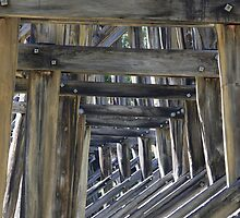 Noojee Trestle Bridge by play4ful
