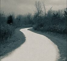 The winter lane  A Split Toned Photograph  by Mitch Labuda