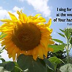 Singing Sunflower by Rocky Henriques