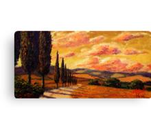Tuscany Cypress Road Canvas Print