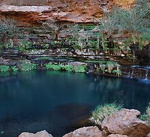 Dales Gorge, Karijini by Richard  Stanley
