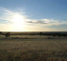 Sunburnt Country by Kristiane Anderson