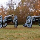 Two cannons at the enterance to the Colonial Parkway by Timothy Gass