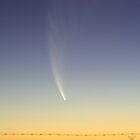 Comet McNaught by Martin Pot