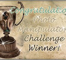 banner for challenge by micklyn