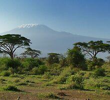 Kilimanjaro 2 by Adri  Padmos