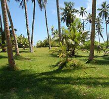 green island by rondinara