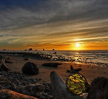 Coastal Treasure by Randall Scholten