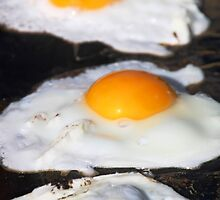 Eggsalent  by Natalie Ord
