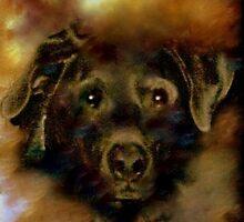 JADE-MY SPECIAL LAB by Sherri     Nicholas