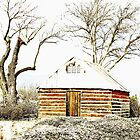 Snow Cabin and the Dead Trees of Winter by redhawk