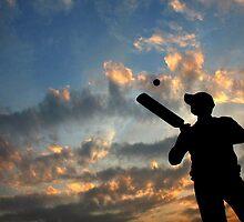 Batsman by RajeevKashyap