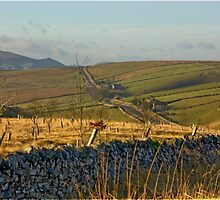 Looking Towards Hebden Moor by Trevor Kersley