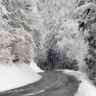 Snowy Road by davemorris05