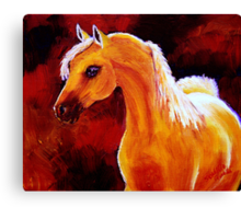 Horse in the Light Canvas Print