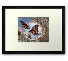 The Monarch and the Thistle Framed Print