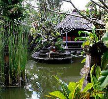 Indonesia 7 - Ananda Cottages, Ubud Bali by Normf