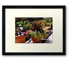 Enjoy The Sunshine Framed Print