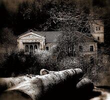 The House by Mojca Savicki