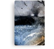 Storm Bringer Canvas Print