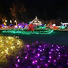 Garden of Lights by Chappy