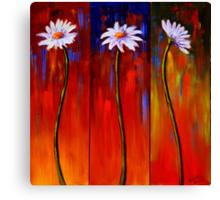 Three White Daisies Canvas Print
