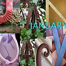 January by Abba Richman