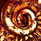 Heart of gold by onichek