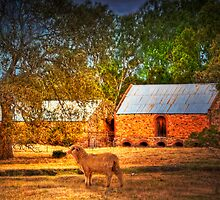 The Farm - Mount Barker, Adelaide Hills, South Australia by Mark Richards