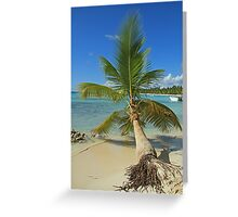 Fallen Palm Greeting Card