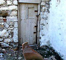 Old Door and Broken Pot by Bowen Bowie-Woodham