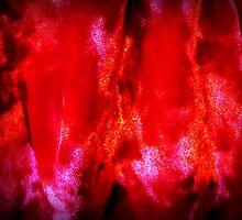 Firey Velvet by Linda Miller Gesualdo