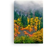 Hillside colours Canvas Print