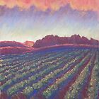 Vineyard Sunset by Susan Genge