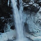Snoqualmie Falls with Icicles by Tori Snow