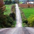 Beautiful Country Road by nikspix