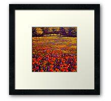 Sonoma Spring Meadow Framed Print