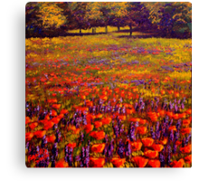 Sonoma Spring Meadow Canvas Print