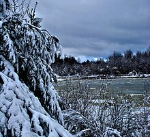 Winters Wonder 10 by Christopher Keough