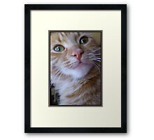 You Said What? Framed Print