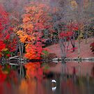 Autumn in Lake Carmel by CMCetra