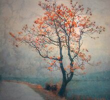 Between Seasons by Tara  Turner