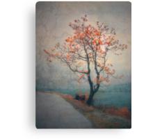 Between Seasons Canvas Print