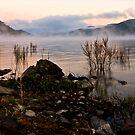 Morning Mist on Lake Eildon by dazzleng