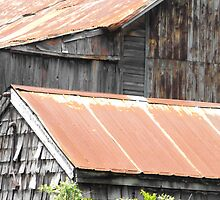 Rusted Roof Tops by Tracy Faught
