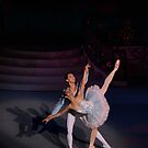 The Nutcracker Grand pas de deux by vgursabia