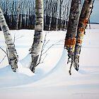 Winter Shadows by Douglas Hunt