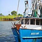florida dock-miss ann by nolenphotograph